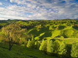 Farmland Near Taihape, North Island, New Zealand, Pacific Photographic Print by Ben Pipe