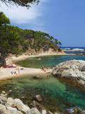 Cala Estreta, Cap Roig, Near Calella De Palafrugell, Costa Brava, Catalonia, Spain, Mediterranean,  Photographic Print by Stuart Black