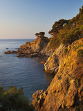 Coastline at Dawn, Calella De Palafrugell, Costa Brava, Catalonia, Spain, Mediterranean, Europe Photographic Print by Stuart Black