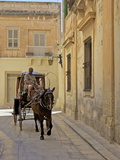Mdina, the Fortress City, Malta, Europe Photographic Print by Simon Montgomery