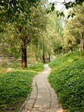 Path in Yuanmingyuan (Yuan Ming Yuan) Park, Old Summer Palace, Beijing, China, Asia Photographic Print by Kimberly Walker