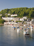 Morning Light on the River Looe at Looe, Cornwall, England, United Kingdom, Europe Photographic Print by David Clapp