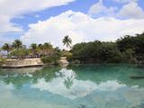 Lagoon, Chankanaab National Park, Cozumel Island (Isla De Cozumel), Quintana Roo, Mexico, Caribbean Photographic Print by Wendy Connett