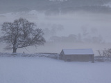 Barn in Winter, Derbyshire Dales, Derbyshire, England, United Kingdom, Europe Photographic Print by Frank Fell