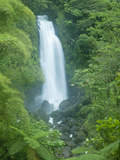 Trafalgar Falls, Roseau Valley, Morne Trois Pitons National Park, UNESCO World Heritage Site, Domin Photographie par Kim Walker