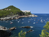 View over Bay, Sa Tuna, Near Begur, Costa Brava, Catalonia, Spain, Mediterranean, Europe Photographic Print by Stuart Black