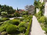 Medieval Mediterranean Garden of St. Lawrence Monastery, Sibenik, Dalmatia Region, Croatia, Europe Photographic Print by Emanuele Ciccomartino