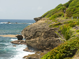 Coastal Section of the Grand Sentier Hike around Caravelle Peninsula, Caravelle, Martinique, Windwa Photographic Print by Kim Walker
