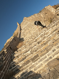 Woman Climbing Steep Steps, Great Wall of China, UNESCO World Heritage Site, Huanghuacheng (Yellow  Fotografie-Druck von Kimberly Walker