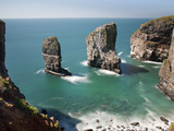 The Elegug Sea Stacks, Pembrokeshire, Wales, United Kingdom, Europe Photographic Print by David Clapp