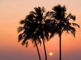 Agonda Beach, Goa, India, Asia Photographic Print by Ben Pipe