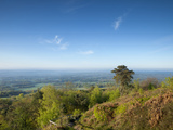 Leith Hill, Highest Point in SE England, View South Towards the South Downs on a Spring Morning, Su Photographic Print by John Miller