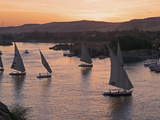 Feluccas on the River Nile, Aswan, Egypt, North Africa, Africa Photographic Print by  Tuul