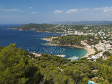 View over Llafranc and Cap Roig from Cap De St. Sebastia, Near Palafrugell, Costa Brava, Catalonia, Photographic Print by Stuart Black