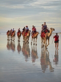 Tourist Camel Train on Cable Beach, Broome, Kimberley Region, Western Australia, Australia Photographic Print by David Wall