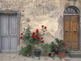 Tuscan Doorway in Castellina in Chianti, Italy Fotoprint van Walter Bibikow