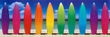 Surf Boards Rainbow Poster