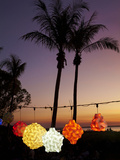 Lanterns for Sale at Mindil Beach Sunset Market, Darwin, Northern Territory, Australia Photographic Print by David Wall
