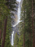 Yosemite Falls, Yosemite National Park, California, Usa Photographic Print by Jamie & Judy Wild