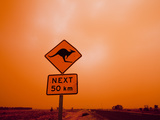 Kangaroo Crossing Road Sign, Outback Dust Storm, Rural Highway, Ivanhoe, New South Wales, Australia Photographic Print by Paul Souders