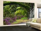 Coast Live Oaks and Azaleas Blossom, Magnolia Plantation, Charleston, South Carolina, Usa Wall Mural – Large by Adam Jones