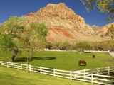 Historic Spring Mountain Ranch, Red Rocks Canyon National Conservation Area, Nevada, Usa Photographic Print by Maresa Pryor