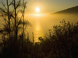 Sweet Fennel, Foeniculum Vulgare, and Sunset over Big Sur Coastline, California, Usa Photographic Print by Paul Colangelo