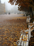 Marienbad Park in Autumn Morning, Marianske Lazne, Czech Republic Photographic Print by Bruce Yuanyue Bi
