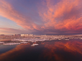 Huge Iceberg and Ice Floes in the Ocean at Sunrise, Antarctica Photographic Print by Keren Su
