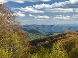 Spring View of Deep Creek Valley, Great Smoky Mountains National Park, North Carolina, Usa Photographic Print by Adam Jones