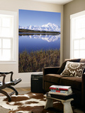 Tundra Pond in Summer, Denali National Park, Mount Mckinley, Alaska, Usa Wall Mural by Gerry Reynolds