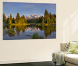Teton Mountain, Snake River at Scwabacher Landing in Grand Teton National Park, Montana, Usa Wall Mural by Chuck Haney