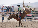 Competitor in the Bronco Riding Event During the Annual Rodeo Held in Socorro, New Mexico, Usa Photographie par Luc Novovitch
