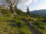 Steve Bjorklund Rides the Singletrack of the Bangtail Ridge Trail Near Bozeman, Montana, Usa Mr Lámina fotográfica por Chuck Haney