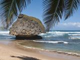 Bathsheba Beach Barbados, Caribbean Reproduction photographique par Michael DeFreitas