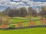 Large Field and Fence Line in Louisville, Kentucky, Usa Photographic Print by Adam Jones