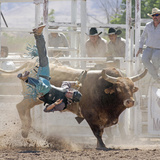 Competitor Falling from His Mount During the Bull Riding Competition, Socorro, New Mexico, Usa Photographic Print by Luc Novovitch