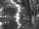 Shaded River in the Pampa Region, Argentina Photographic Print by Michele Molinari
