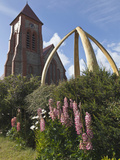 Church Tower with Lupine and Whalebone Arch, Port Stanley, Falkland Islands, South Atlantic Photographic Print by Bill Young
