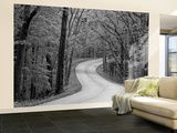 Curvy Roadway under Spring Green Canopy at Brown County State Park in Indiana, Usa Wall Mural – Large by Chuck Haney
