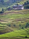 Village House and Rice Terraces in Metshina Village, Bhutan Photographic Print by Keren Su