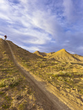 Sam Long Mountain Bikes on the Zippy Doo Dah Trail in Fruita, Colorado, Usa Fotoprint van Chuck Haney