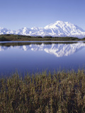 Tundra Pond in Summer, Denali National Park, Mount Mckinley, Alaska, Usa Photographic Print by Gerry Reynolds