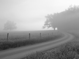 Sunrise on Foggy Frosty Morning, Cades Cove, Great Smoky Mountains National Park, Tennessee, Usa Photographic Print by Adam Jones