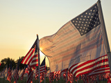 Flag of Honor and American Flags in Honor of the Ten Year Anniversary of 9/11, Salem, Oregon, Usa Photographic Print by Rick A. Brown