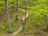Mountain Biking at Brown County State Park in Indiana, Usa Fotoprint van Chuck Haney