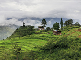 Rice Fields and Terraces Spread Out in All Areas Between the Mountains, Bhutan Photographic Print by Tom Norring