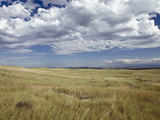 Little Big Horn Battlefield National Monument, Montana, Usa Photographie par Luc Novovitch