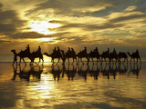 Tourist Camel Train on Cable Beach at Sunset, Broome, Kimberley Region, Western Australia Photographic Print by David Wall