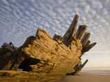 Remains of the Shipwrecked Fishing Boat, Skeleton Coast Wilderness, Namibia Photographic Print by Paul Souders